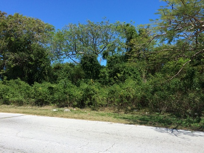 Culbers Hill Nassau